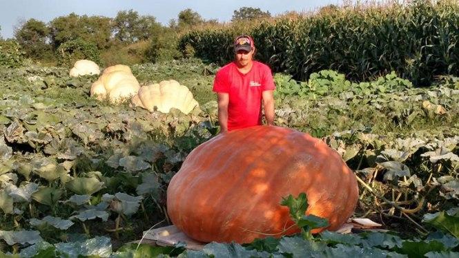 Pumpkin-Suchanek-1-(2)-(2)